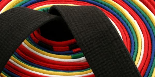 Zett Sports martial arts belts